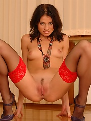 Sweet kitty poses in lacy red stockings on camera
